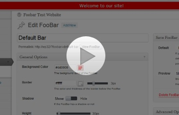 Watch a demo of the Foobar WordPress Plugin